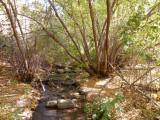 City Creek P1020695.jpg