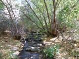 City Creek P1020698.jpg