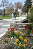 Springtime at Graveley Hall ISU _DSC0339.JPG