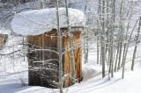 wellhouse in winter _DSC0186.jpg