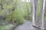 Springtime in Inkom _DSC3746.jpg