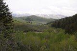 Springtime Mountain Scene from West Buckskin Road _DSC3770.jpg