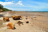 Corinella Coastline - Victoria