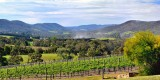 The Yarra Valley ~