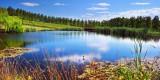 Tarrawarra Lake *