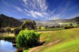 Yarra valley scenic