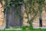 Door with vine growth