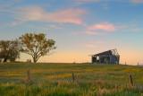 Abandoned shack at dusk ~