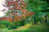 Montsalvat Landscapes
