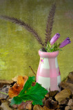 Photo of the Day- 1st March 2008At digitalimagecafe.comStill Life / other Category