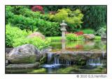 Schedel Arboretum