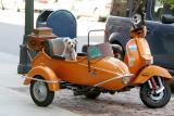 Sidecar Puppy
