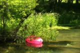 Pink Tube on Elk Creek.