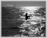 Net Fishing.jpg
