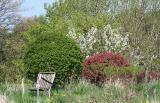 Vigorous Spring