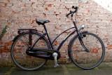 DSC_1242 Pams bike.jpg