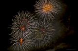Fireworks_DSC7841-800.jpg