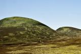 Scottish Highlands-DSC_07100728-800.jpg