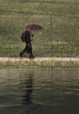 Walking in the Rain Flood