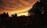 Sunrise Sunset & Mist