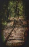 Woodland Rails