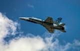 Hornet 80th Anniversary