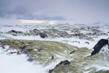 IMG_5453.jpg Efri-Fóelluvötn - off Route 1 or the Ring Road (Icelandic: Þjóðvegur 1) - © A Santillo 2014