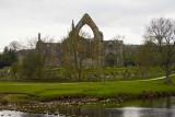 IMG_3783.jpg Bolton Abbey - © A Santillo 2012