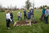 Bear Hollow Tree Planting Event 03 10 18