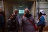 Viewing Exhibits At Luminato