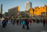 Evenings in Toronto