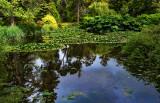 Fota Wildlife Park Gardens