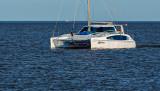 catamaran +