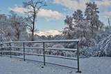 3410 April Snow.jpg