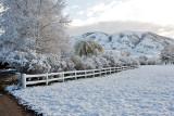 3412 April Snow.jpg