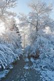 3414 April Snow.jpg