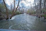 3484 River.jpg