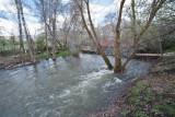 3485 River.jpg