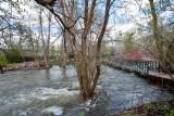 3488 River.jpg