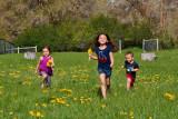 3508 kids in pasture with flowers crop.jpg