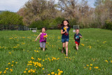 3509 kids in pasture with flowers.jpg