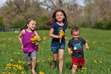 3514 kids in pasture with flowers.jpg