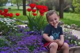 3518 Cannon in flowers.jpg