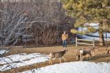 0176 Deer Dave.jpg