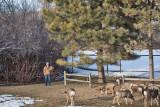 0181 Deer Dave.jpg