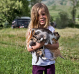 0925_Willow_and_kittens.jpg