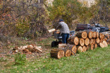 4787_Firewood.jpg