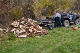 4788_Firewood.jpg