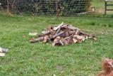 4790_Firewood.jpg