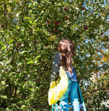 4943_Kids_picking_apples.jpg